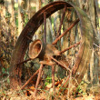 Old wagon wheel — Stock Photo #2011404