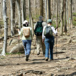 Hikers — Stock Photo #2012679