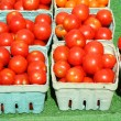 Cherry tomatoes in green baskets — Stock Photo #2028137