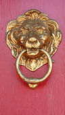 Brass lion — Stock Photo