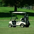Stock Photo: Golf cart on fairway of course