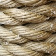 Wound up rope macro backround — Stock Photo