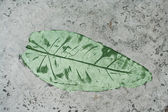 Green Leaf impression — Stock Photo