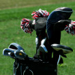 Golf bag full of clubs — Stock Photo #2040144