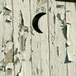 Outhouse moon door — Stock Photo #2040327