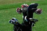 Golf bag full of clubs — Stock Photo