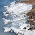 Shore of a frozen lake — Stock Photo