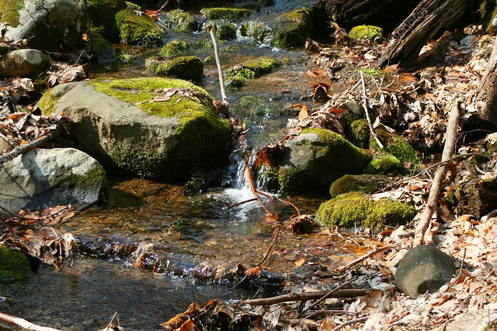 A Small stream in the woods with rocks — Stock Photo #2060207