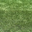 Astro turf background — Stock Photo #2082701
