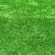 Astro turf background — Stock Photo #2082792