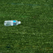 Empty water bottle on grass — Stock Photo