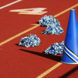 Stock Photo: Cheerleader pom poms and megaphone