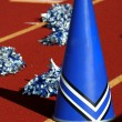 Cheerleader pom poms and megaphone - Stock Photo