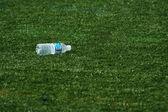 Empty water bottle on grass — Stock Photo