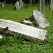 Broken Old Gravestones — Stock Photo