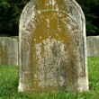 Old Gravestone — Stock Photo #2102159