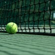 Tennis ball near net — Lizenzfreies Foto