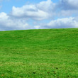 Field and cloudy sky — Stock Photo #2104302