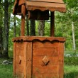 Wooden wishing well — Stock Photo