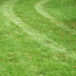 Tire tracks in the grass — Stock Photo