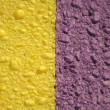 Yellow and purple sponges — Stock Photo