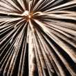 Fireworks — Stock Photo #2120149