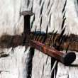 Stock Photo: Rusty Railroad Spike