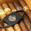 Stock Photo: Cigars in a humidor
