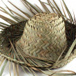 Straw hat — Stock Photo #2540623