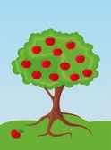 Apple-tree — Stock Vector