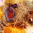 Various spices closeup — Stock Photo