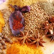 Various spices closeup — Stock Photo #2616065