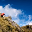 Mountain climbing — Stockfoto