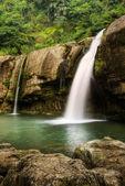 Jungle waterfall — Stock Photo