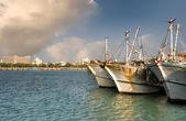 Ocean harbor — Stock Photo