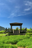 Pavilion on the grassland — Stock Photo