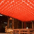 Red and beautiful Chinese lantern - Photo