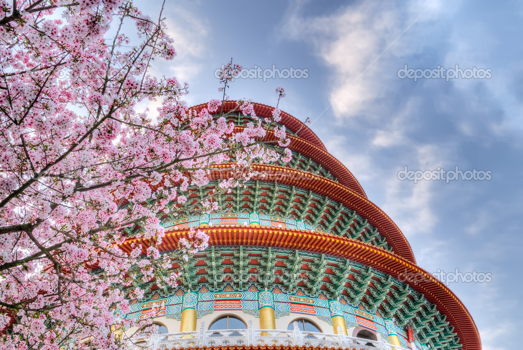 Sakura flowers and pagoda on blue sky in day. — Stock Photo #2655479