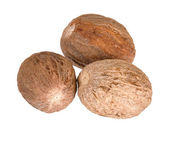 Brown nutmeg spice isolated — Stock Photo