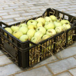 Apples in a plastic box — Stock Photo