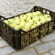 Apples in a plastic box - Stock Photo