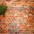 Royalty-Free Stock Photo: Red brick wall