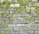 Old stone wall — Stock Photo