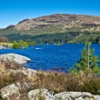Scottish landscape — Stock Photo