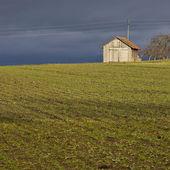 Field hut — 图库照片