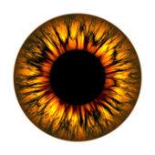 Brand oog — Stockfoto