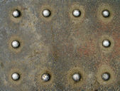 Backgrounds with rivets — Stock Photo