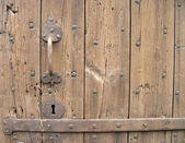 The handle of an old door — Stock Photo