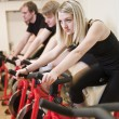 Group of having spinning class — Stock Photo #2045302