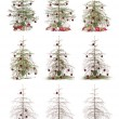 Time lapse - Christmas tree — Stockfoto
